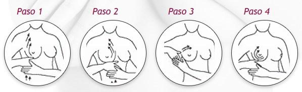 instrucciones de uso upsize paso a paso