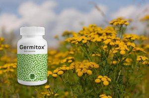Germitox – ¡Purifica todo tu cuerpo y renueva tus sentidos!