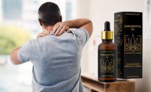 Cannabisvital Oil Reseña: ¡Una fórmula derivada del CBD para conseguir un tono corporal mejorado en 2020!