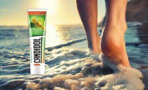 Candidol Revisión – Extractos orgánicos para luchar contra la micosis y hongos alrededor de los pies!