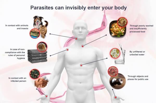 toxinas y papilomas