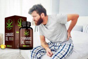 Cannabis Oil Cápsulas – Bio-solución para juntas extraíbles y activas