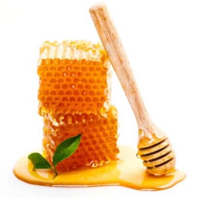 abeja y apitoxina