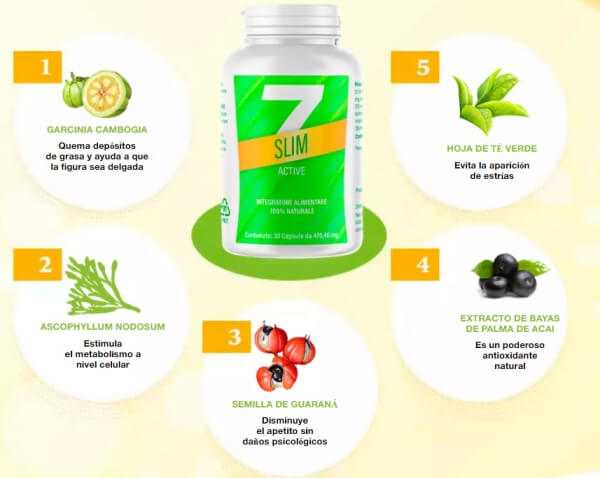 7 Slim Active ingredientes