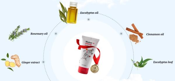 MotionEnergy Ingredientes