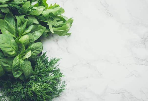 plantas y hierbas contra la presión arterial alta y el estrés