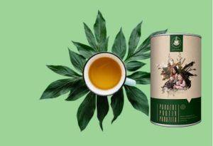 Parazol Revisión : ¡un té de hierbas antiparasitario y antimicótico para un sistema equilibrado en 2021!