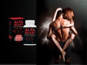 Alfa Beast – ¡Sea un león y no un cachorro en la cama en 2021 con las pastillas orgánicas!