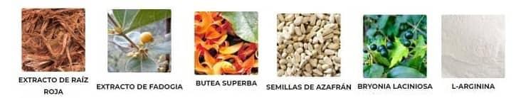 ingredientes y composicion