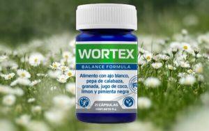 Wortex pastillas – ¡Despídete de los parásitos con una fórmula orgánica especial!