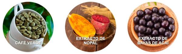 ingredientes, cafe verde, extracto de nopal, bayas de acai