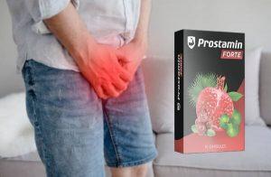 Prostamin Forte – Suplemento dietético de apoyo para la próstata con extracto de Gotu Kola para el control de la vejiga, la salud sexual y de la próstata completa