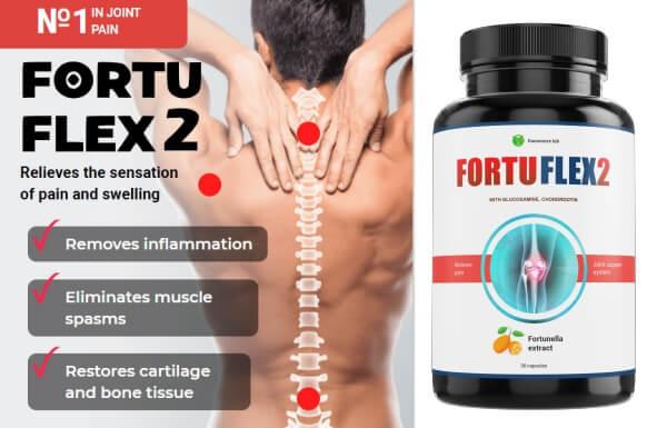 FORTUFLEX2 - PRECIO EN ESPAÑA?
